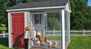 How to Find the Best Dog Kennel for Whenever You Need to Go Away